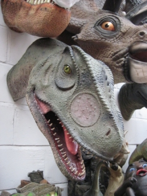 Allosaurus Head Looking Straight (JR 100052)