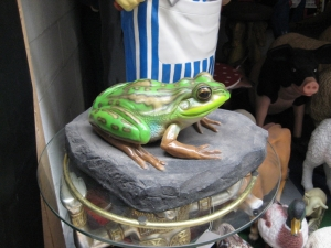 Green and Golden Bell Frog on Rock (JR 100002)