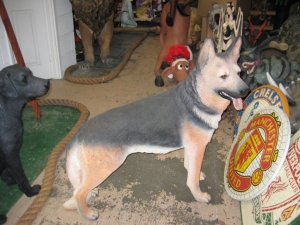 German Shepherd Dog (JR 110104)