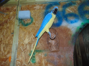 Parrot - Blue/Yellow (JR 170015by)