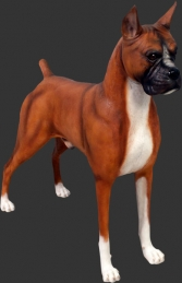 Boxer Dog (JR 110120)	 - Thumbnail 01