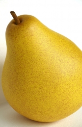 Pear 2ft (JR IM)	 - Thumbnail 03