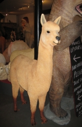 Alpaca (JR 080074)