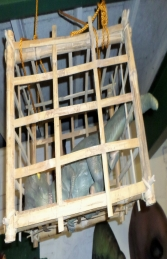 Baby T Rex in Cage (JR R-196) - Thumbnail 02