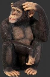 Chimpanzee (JR 110026)