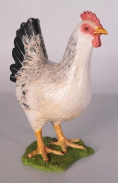 Chicken - White (JR 100041A) - Thumbnail 01