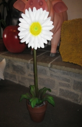 Daisy Small 3ft (JR 2201)    - Thumbnail 01