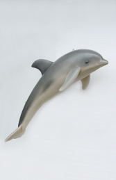 Dolphin hanging (JR 2158)
