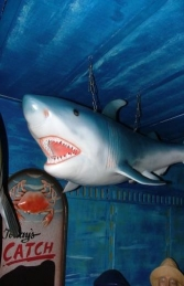 Shark Small (JR 2398) - Thumbnail 01