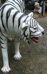 Tiger life-size White (JR 1856 -W)