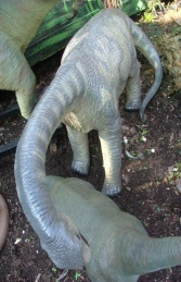 Camarasaurus 3ft high (JR 2414) - Thumbnail 02