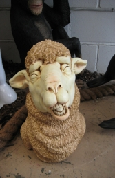Merino Sheep Head 3 (JR 110046)