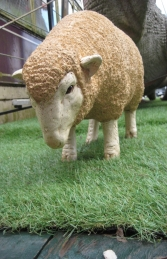 Merino Sheep head down - Small (JR 110125) - Thumbnail 02