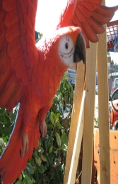 Parrot Flying - Red (JR JY)	 - Thumbnail 02