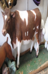 Guernsey Cow (JR 120003)
