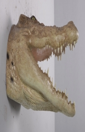 Crocodile head mouth open JR 190049