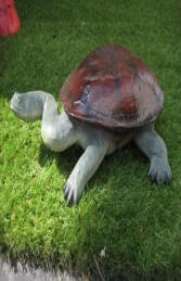 Long Neck Turtle (JR 100114) - Thumbnail 01