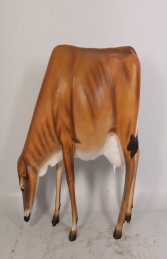 Cow Head Down (Smooth No Horns) - Jersey (JR 0038)