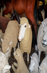 Merino Sheep Head Up (JR 080069) - Thumbnail 03