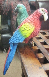Sitting Parrot - Red (JR R-036) - Thumbnail 03