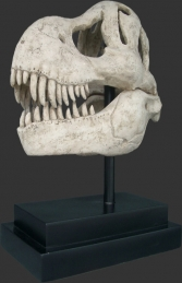 T Rex Skull on base (JR 100502RS)