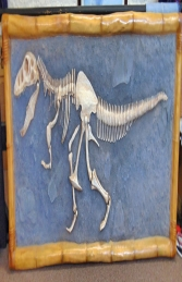 T Rex Skeleton wall mounted (JR R-048) - Thumbnail 02