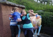 JACKS COWS OUT ON DISPLAY