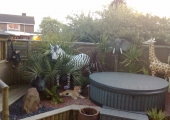 SAFARI GARDEN IN SHIPSTON-ON-STOUR... 2