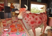 Strawberry Cow