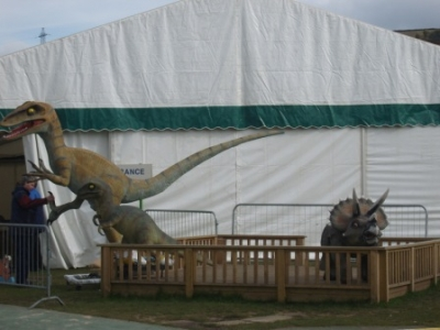 DINOS ON DISPLAY IN HALIFAX